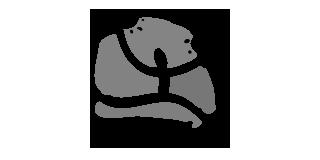 muzaiek-logo